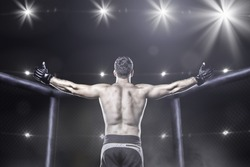 Mma fighter in cage after victory, behind view