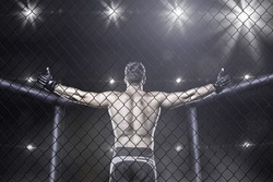 Mma fighter in cage celebrating win, view from behind
