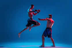 MMA. Two professional fighters punching or boxing isolated on blue studio background in neon. Fit muscular caucasian athletes or boxers fighting. Sport, competition and human emotions, ad.