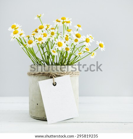 Mock up. Bouquet of daisy-chamomile flowers in concrete pot in the morning. with empty gift tag.