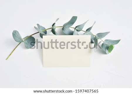 Mock up of Eucalyptus leaves and paper clip with place for text on white background. Wreath made of eucalyptus branch. Flat lay, top view Сток-фото ©