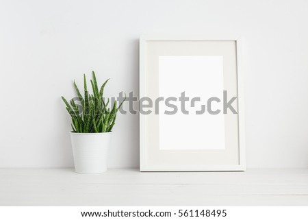 Mock up white frame and aloe vera plant on book shelf or desk. Bright color.