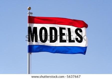 Model Flag