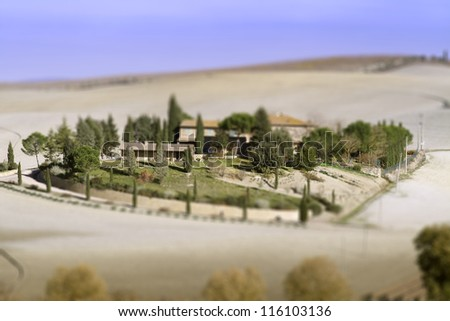 Model like view of Tuscany vineyard