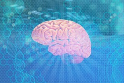 model of the human brain, the concept of medical health, intellectual capabilities, the study of the activity of the cerebral cortex, psyche and consciousness