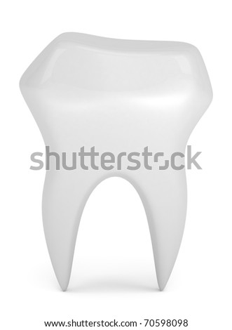Model of tooth isolated on white