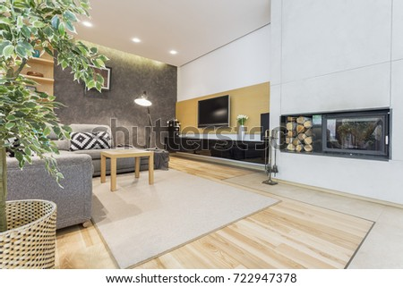 Modern and spacious living room with fireplace and plasma tv  #722947378