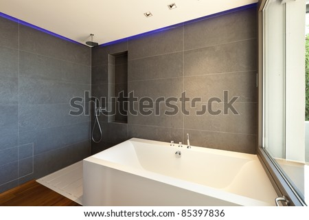 Modern apartment, bath and shower