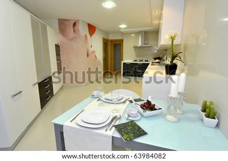 Modern apartment big kitchen with beautiful decoration