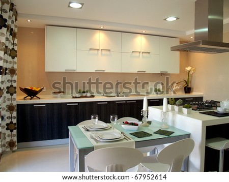 Modern apartment big kitchen with beautiful decoration