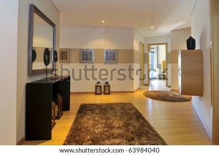 Modern apartment hall decoration