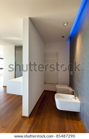 Modern apartment, toilet and bidet