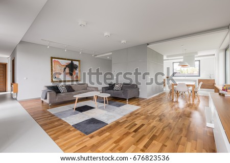 Modern apartment with open living room, kitchenette and dining area