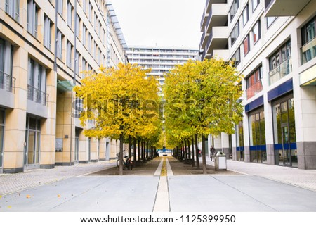Modern architecture  with Trees between buildings in Berlin, Germany.