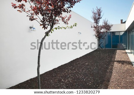 Modern arquitecture indoor minimalist style garden with trees. Horizontal