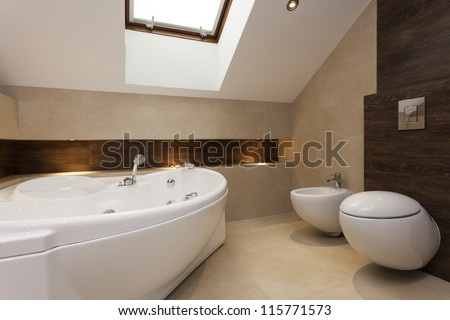 Modern bathroom with bath  bidet and toilet. Modern Bathroom With Bath  Bidet And Toilet Stock Photo 115771573