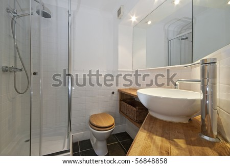 modern bathroom with designer suite and wood elements
