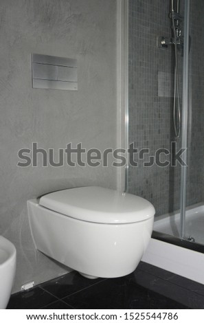 Modern bathroom with modern toilet bowl