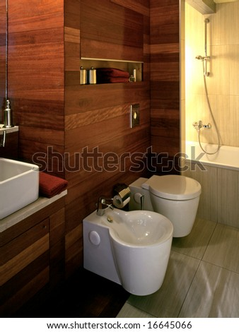 modern bathroom with wooden wall
