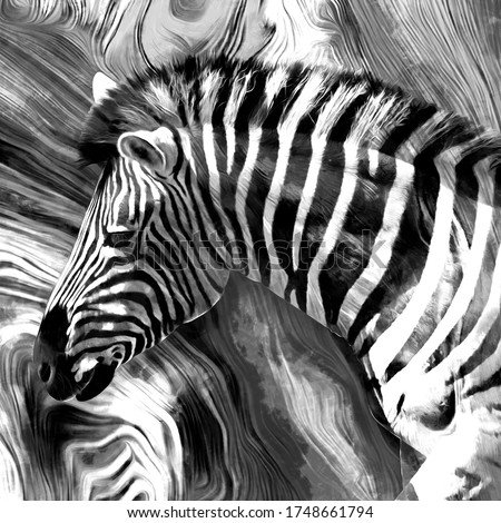 modern black and white zebra oil painting. Abstract painting for interior decoration. contemporary style artwork with chaotic paint strokes and splashes, artist collection of animal painting.