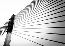 Modern bridge architecture at Putrajaya (Black and white)