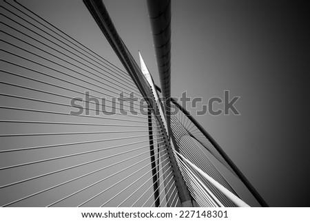Modern bridge architecture at Putrajaya (Black and white) #227148301