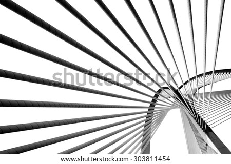 Modern bridge architecture at Putrajaya on a Black and white.  (Shallow DOF, slight motion blur)