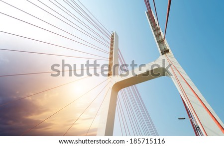 Modern bridge cables, twilight landscape. #185715116
