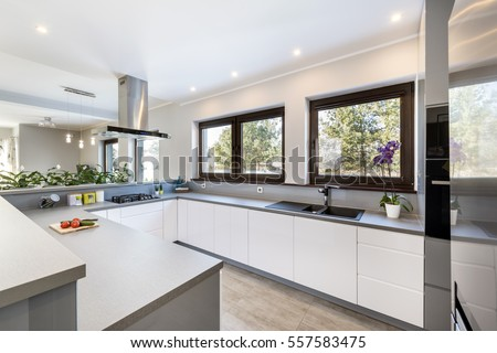 Modern, bright, clean, kitchen interior design with stainless steel appliances in a luxury house