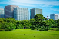Modern building with green garden on blue sky background in Tokyo, Japan.