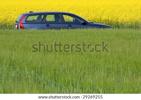 Modern car between yellow and green fields