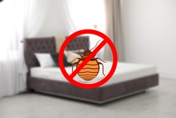 Modern clean mattress without bed bugs in room