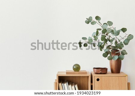 Modern composition of living room interior with design wooden bookcase, eucalyptus leaf in vase, book, decoration, glassy ball and copy space on the white wall. Template. Stockfoto ©