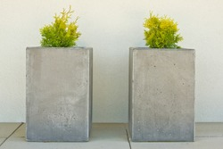 Modern concrete flower pots on front porch of a house. Rectangular prism or cuboid shape with young thuja plant.