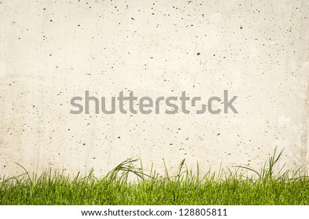 modern concrete wall and grass - nice background with space for text