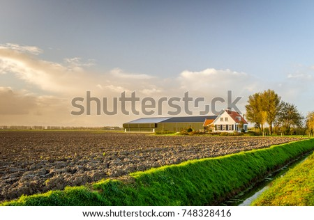 Modern Dutch farmhouse with barns in late afternoon light on a sunny day in the early autumn season.