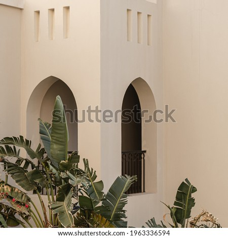 Modern east style building with beige walls, windows and tropical palm plant leaves. Aesthetic abstract minimal architecture facade design concept background