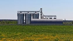 Modern Elevator grain dryer storage barrels on green field in summer day on clear blue sky background - agriculture farming, grain harvesting and storage