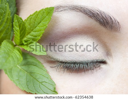 Modern fashion makeup of a female eye and fresh mint - macro shot