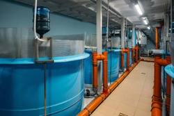 Modern fish farm with closed water circulation supply