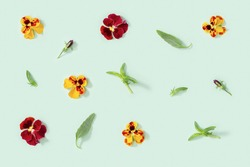 Modern floral pattern with yellow and red pansy flowers, green leaves, small summer flowery seasonal styling ornament