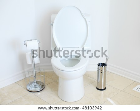 Modern flush toilet. Bathroom