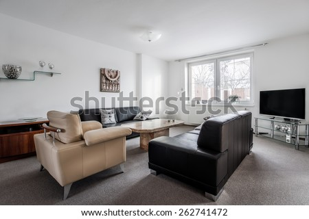 Modern furnished living room in cool style with classic furnishing and decoration #262741472