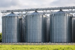 Modern Granary elevator and seed cleaning line. Silver silos on agro-processing and manufacturing plant for storage and processing drying cleaning of agricultural products, flour, cereals and grain.