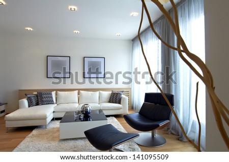 Modern Home Living Room