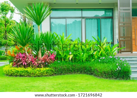 Modern house with beautiful landscaped front yard, Garden with fresh green grass both shrub and flower front lawn background, Garden landscape design Fresh grass smooth lawn with curve form bush.