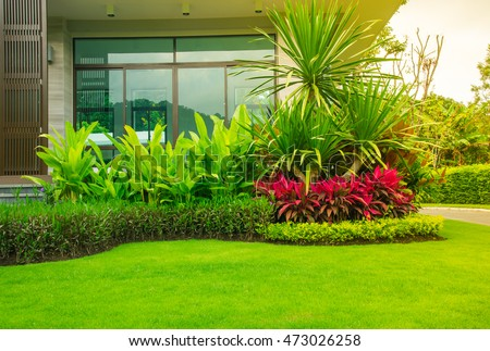 Modern house with beautiful landscaped front yard, Lawn and garden