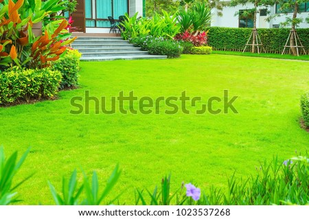 Modern house with beautiful landscaped front yard, Lawn and garden blur background., The design concept for background.