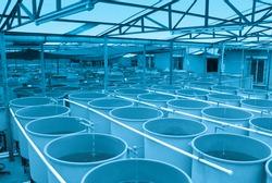 modern industrial aquaculture water system farm