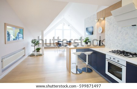 modern interior  kitchen in large apartment in mansard
